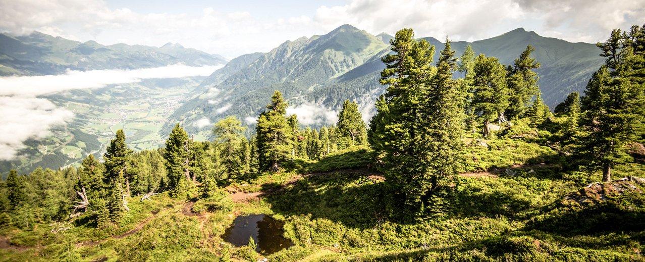 Graukogel in Bad Gastein